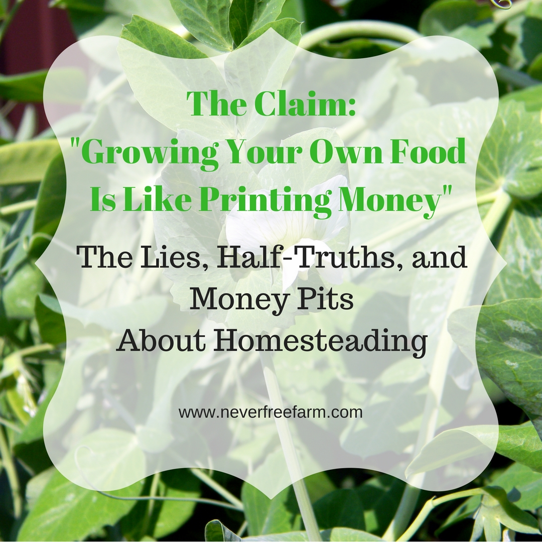 The Lies, Half-Truths and Money Pits About Homesteading: Growing Your Own Food Is Like Printing Money